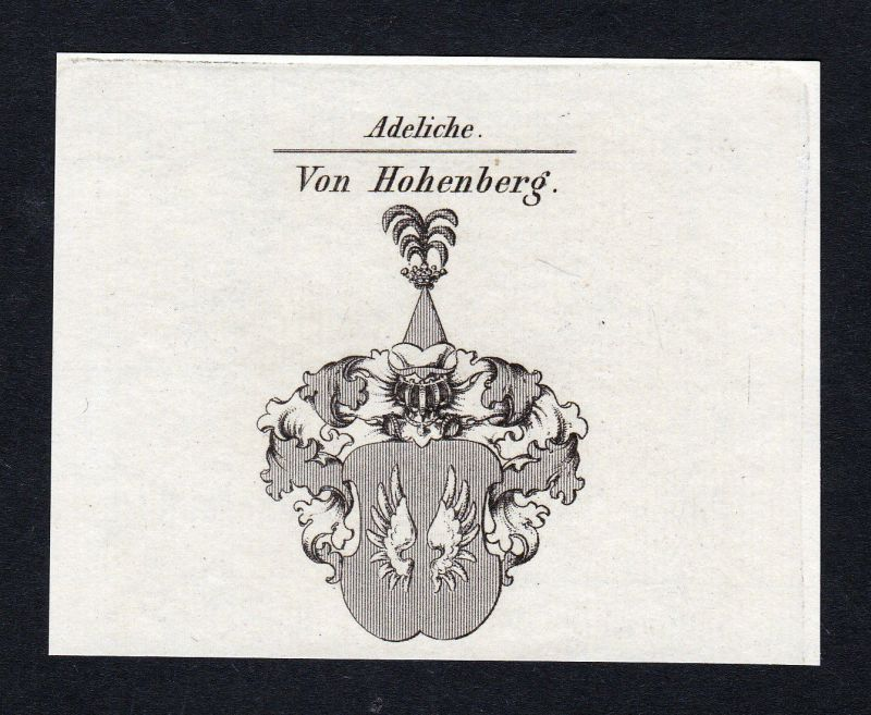 Ca. 1820 Hohenberg Wappen Adel coat of arms Kupferstich antique print heraldry