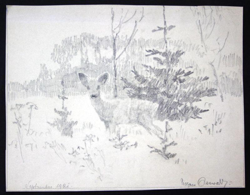 1921 Jagd Reh deer hunt Wald wood Jäger hunter Zeichnung drawing signiert sign