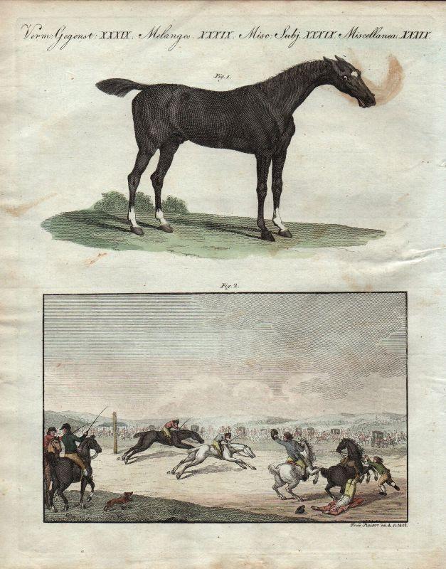 Horse race Pferderennen horses Pferd Pferde England Großbritannien Bertuch