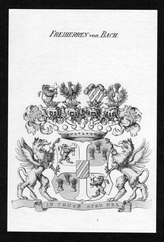 1820 - Bach Wappen Adel coat of arms heraldry Heraldik Kupferstich