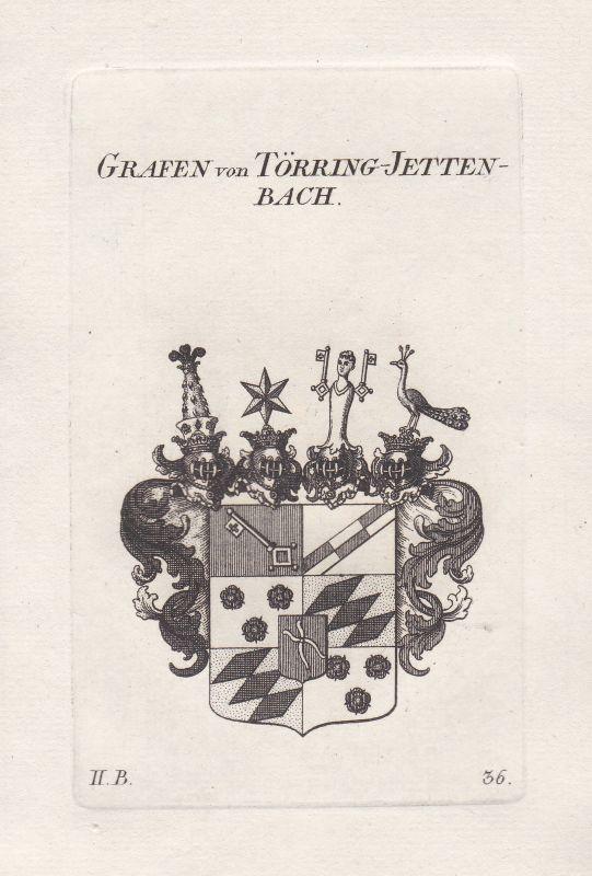 Bayern Toerring Wappen coat of arms heraldry Heraldik Kupferstich antique print