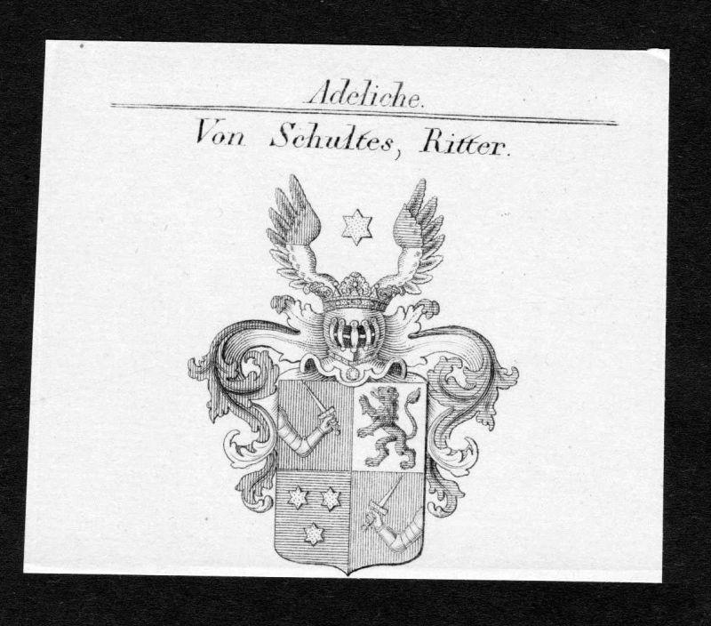 Ca. 1820 Schultes Wappen Adel coat of arms Kupferstich antique print heraldry