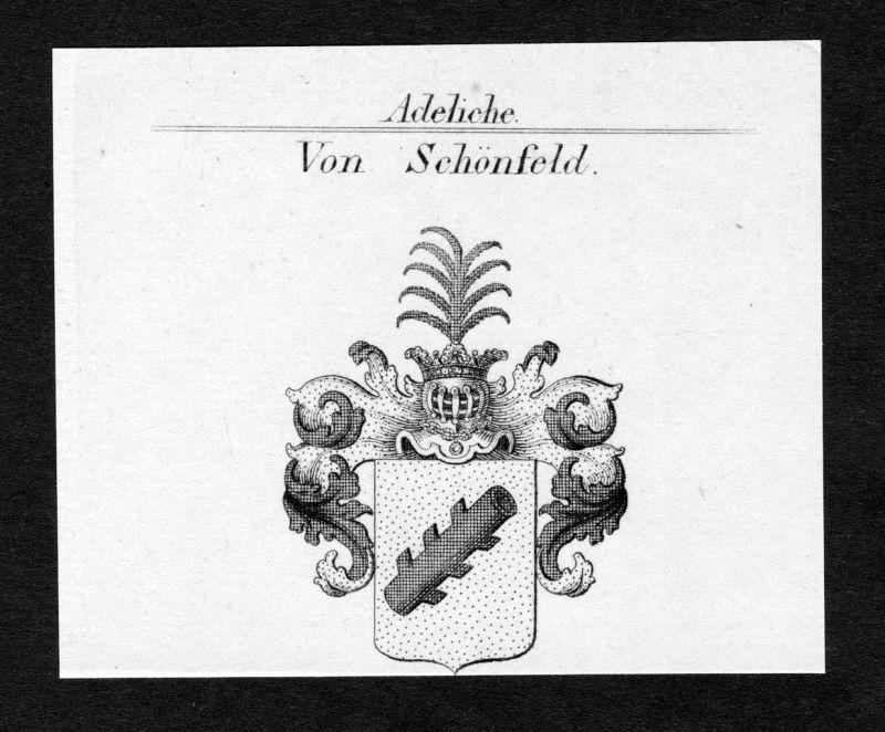 Ca. 1820 Schönfeld Schönfeldt Wappen Adel coat of arms Kupferstich antiqu 138705