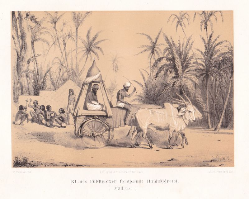 1851 Chennai India Indien Ansicht Lithographie Litho Kittendorff Thornam