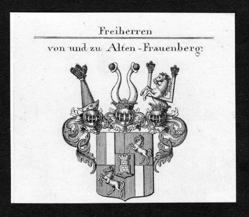 Ca. 1820 Fraunburg Wappen Adel coat of arms Kupferstich antique print heraldry