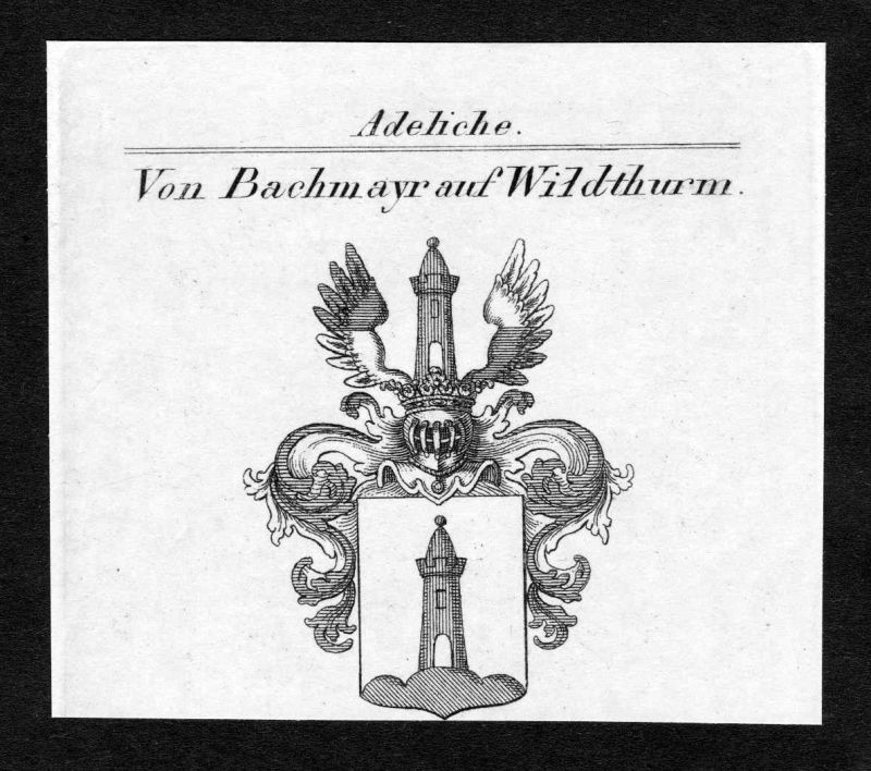 Ca. 1820 Bachmayr Wildthurm Wappen Adel coat of arms Kupferstich antique print