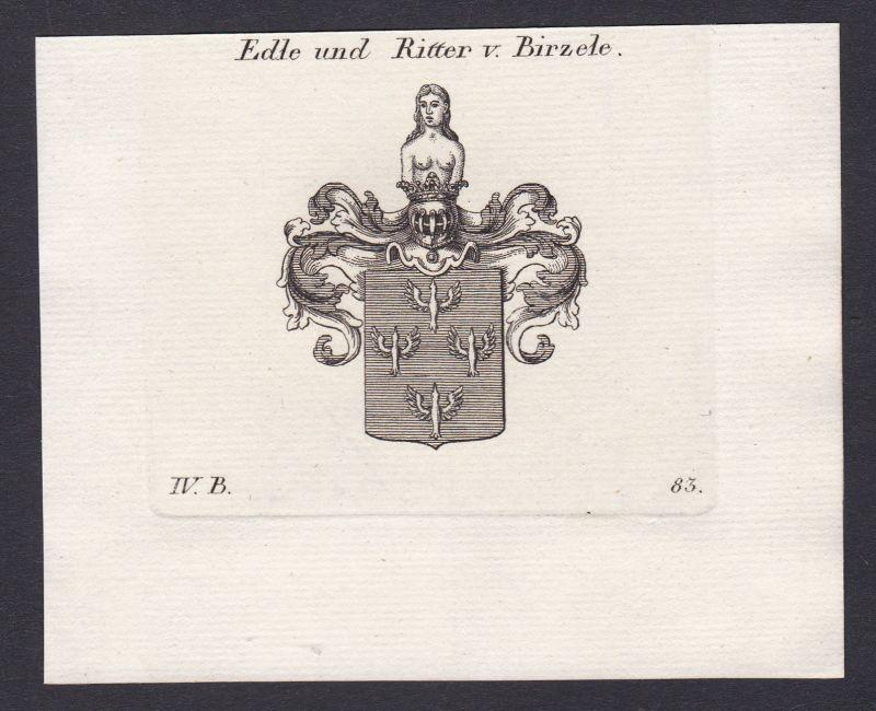 1820 Birzele Wappen Adel coat of arms Heraldik Kupferstich antique print