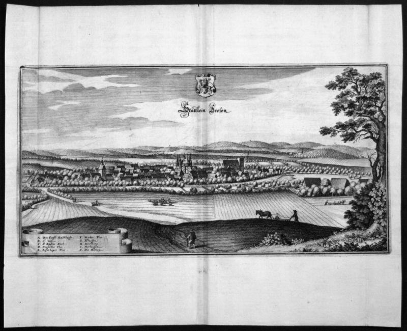 Seesen - Harz - Gesamtansicht - Kupferstich Merian Merian:
