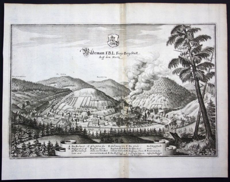 Wildemann / Oberharz / Harz - Gesamtansicht - Karte Kupferstich Merian Merian: