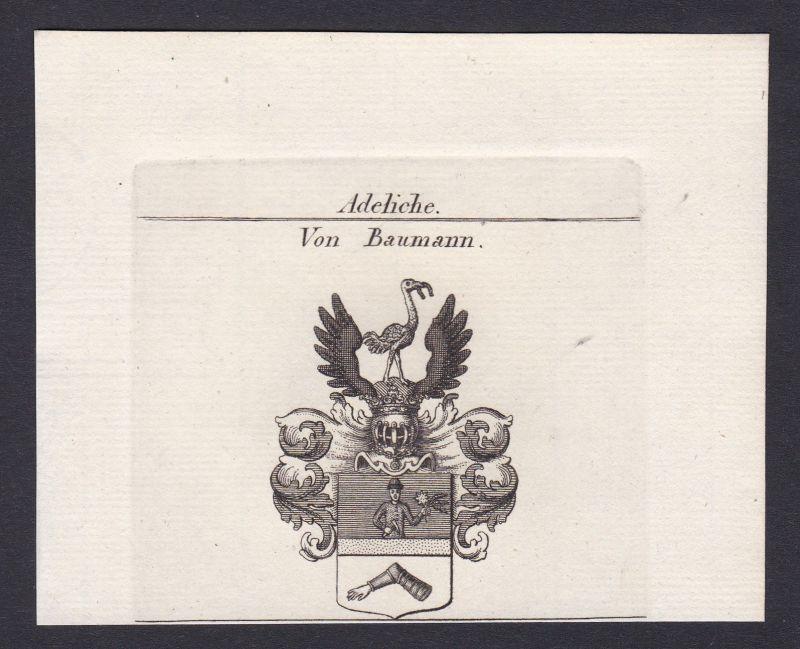 1820 Baumann Wappen Adel coat of arms Heraldik Kupferstich antique print