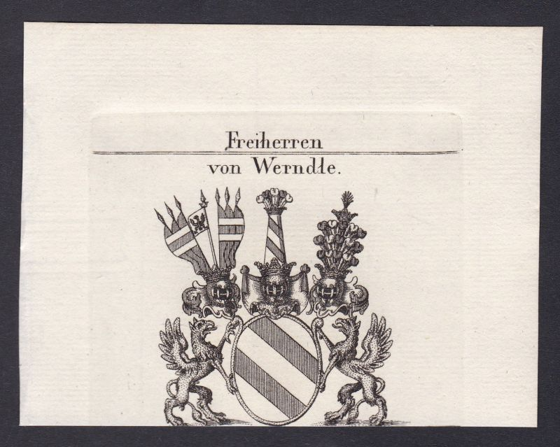 1820 Werndle Wappen Adel coat of arms Heraldik Kupferstich antique print 0