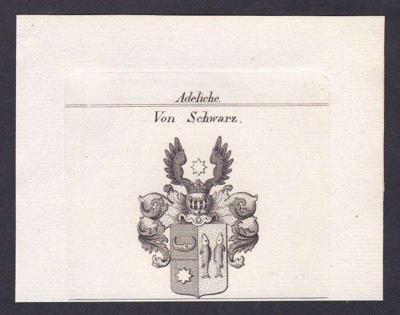 1820 Schwarz Wappen Adel coat of arms Heraldik Kupferstich antique print