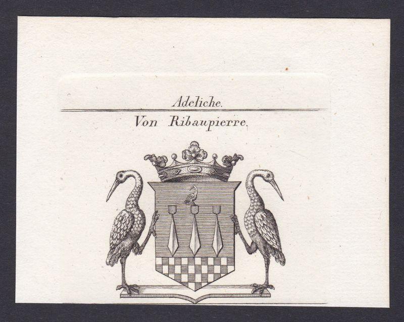 1820 Ribaupierre Wappen Adel coat of arms Heraldik Kupferstich antique print