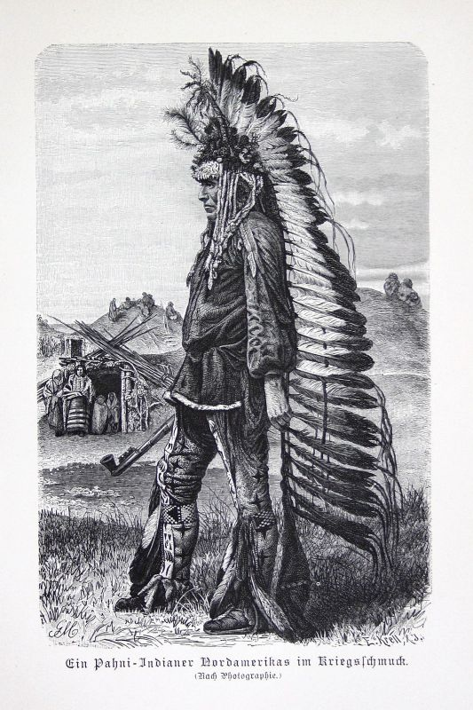 1890 Pawnee Pani Indianer Indian Amerika America United States Krieger warrior