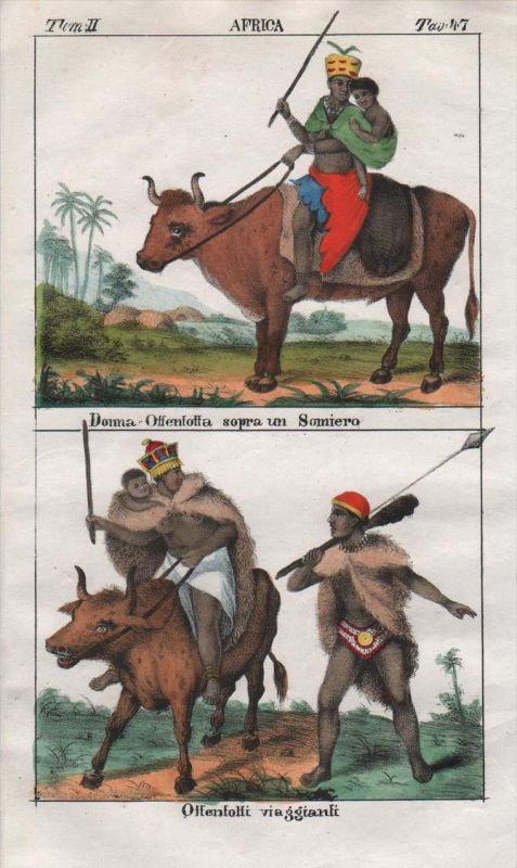 - South Africa Khoikhoi people costume Lithograph natives Negro