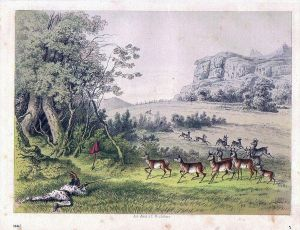 Gabelantilopen Jagd hunting Tiere animals animal Original Lithographie