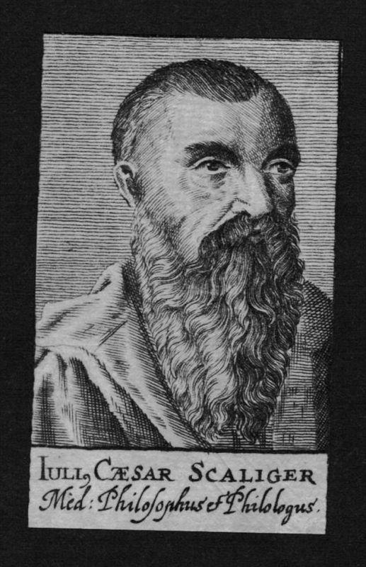 Julius Caesar Scaliger Dichter poet Forscher Kupferstich Portrait