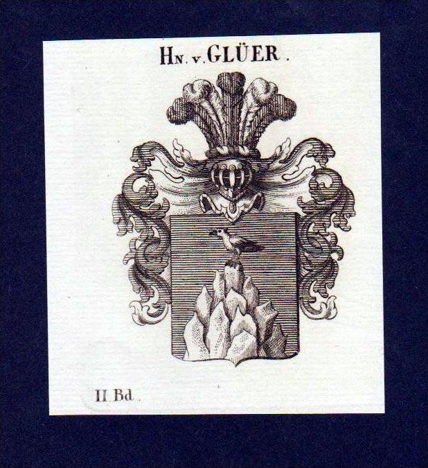 Herren von Glüer Original Kupferstich Wappen engraving Heraldik crest