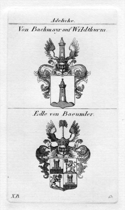 Bachmayr Wildthurm Bäumler Wappen Adel heraldry Heraldik Kupferstich