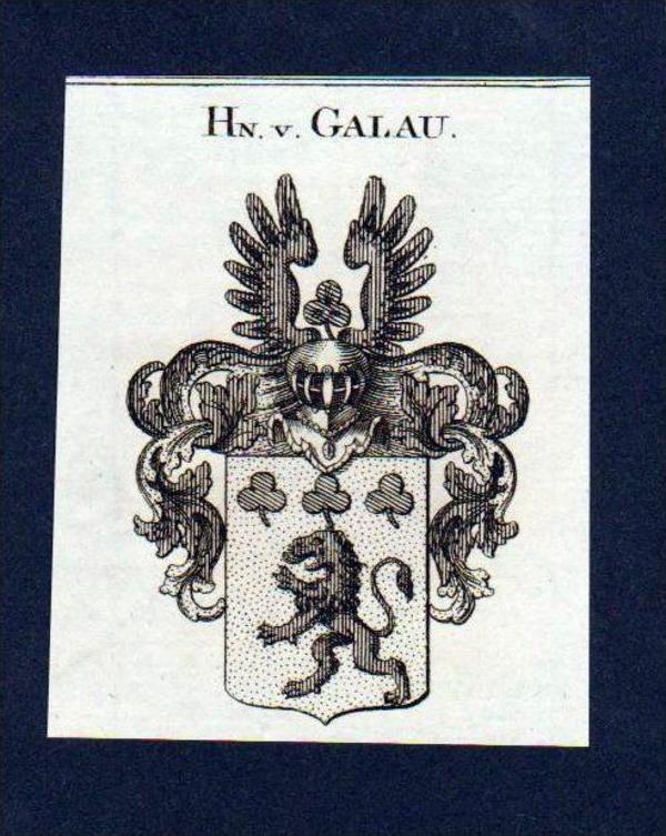 Herren von Galau Original Kupferstich Wappen engraving Heraldik crest