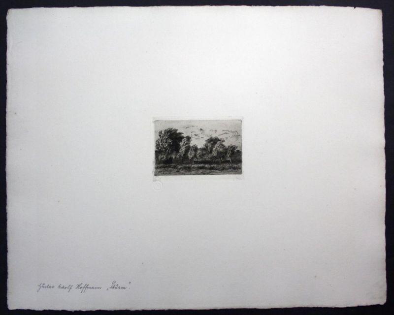 Gustav Adolf Hoffmann Landschaft Sturm Radierung signiert