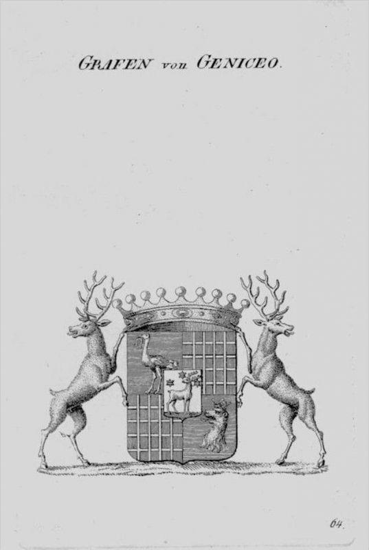 Geniceo Wappen Adel coat of arms heraldry Heraldik crest Kupferstich
