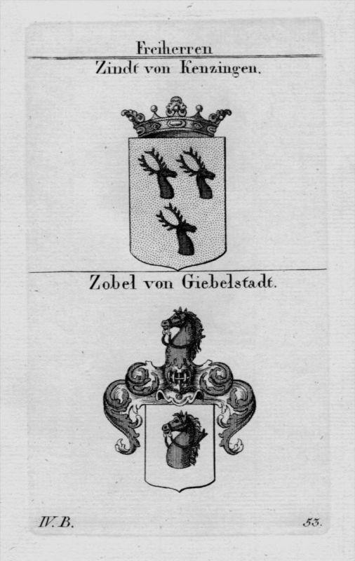 Zindt Zobel Wappen Adel coat of arms heraldry Heraldik crest Kupferstich