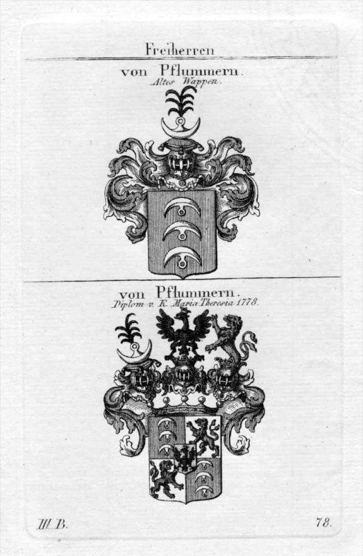 Pflummern - Wappen Adel coat of arms heraldry Heraldik Kupferstich
