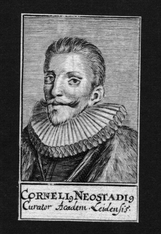 Cornelius Neostadius Jurist lawyer Leiden Holland Kupferstich Portrait