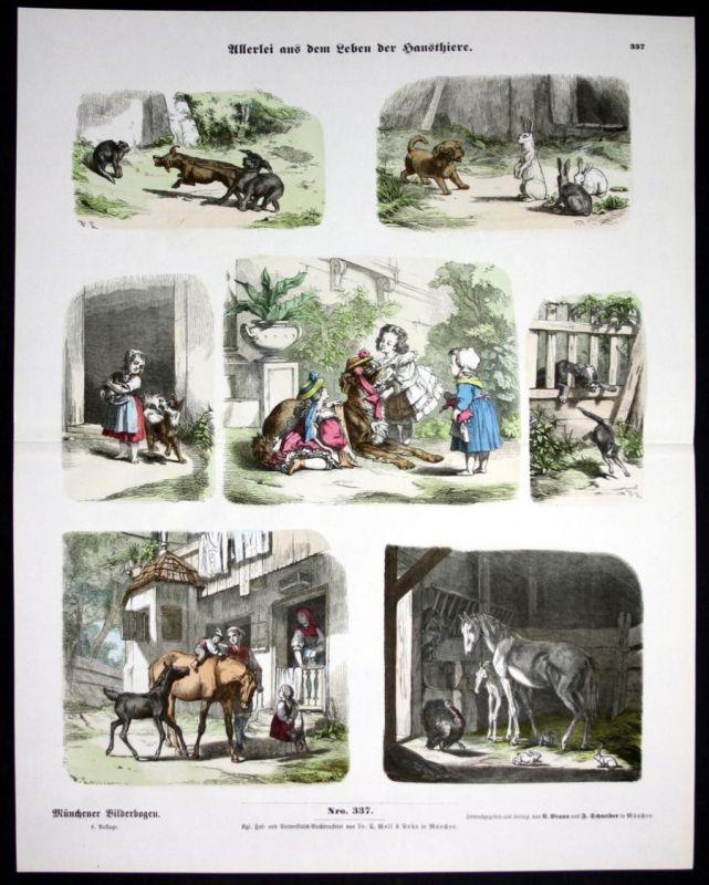 Haustiere Bauernhof Hund Katze Pferd Münchener Bilderbogen Bildergeschichte