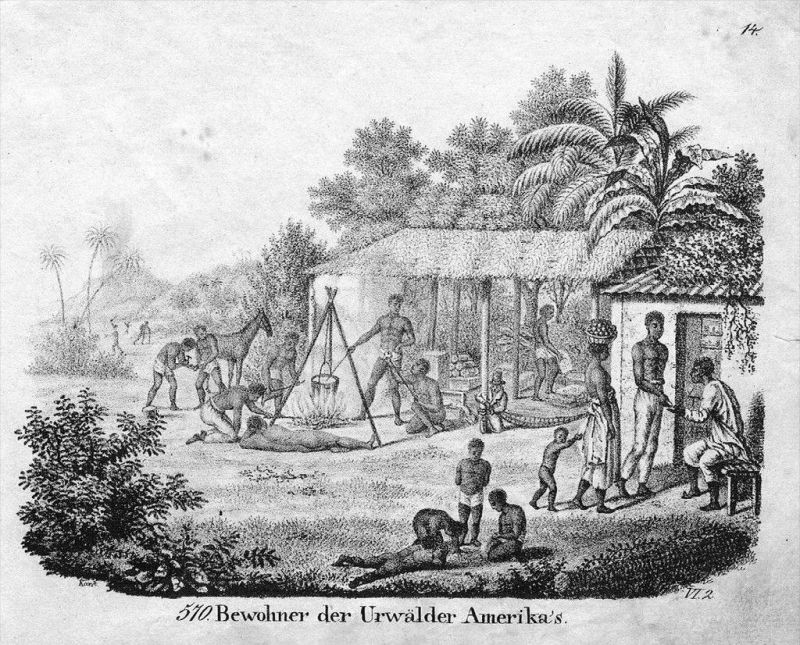 Amerika America Indians costumes Lithographie lithograph antique print