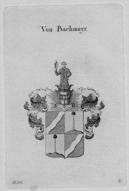 Bachmayr Wappen Adel coat of arms heraldry Heraldik crest Kupferstich