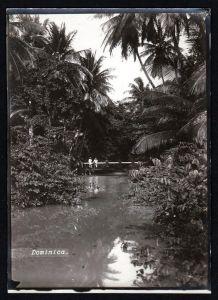 - Dominica Lesser Antilles Caribbean original photo albumin albumen vintage