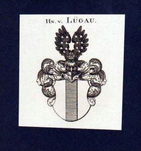 Herren von Lügau Original Kupferstich Wappen engraving Heraldik crest