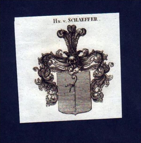 Herren v. Schaeffer Schäfer Kupferstich Wappen
