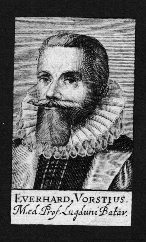 Aelius Everardus Vorstius Arzt doctor Leiden Holland Kupferstich Portrait