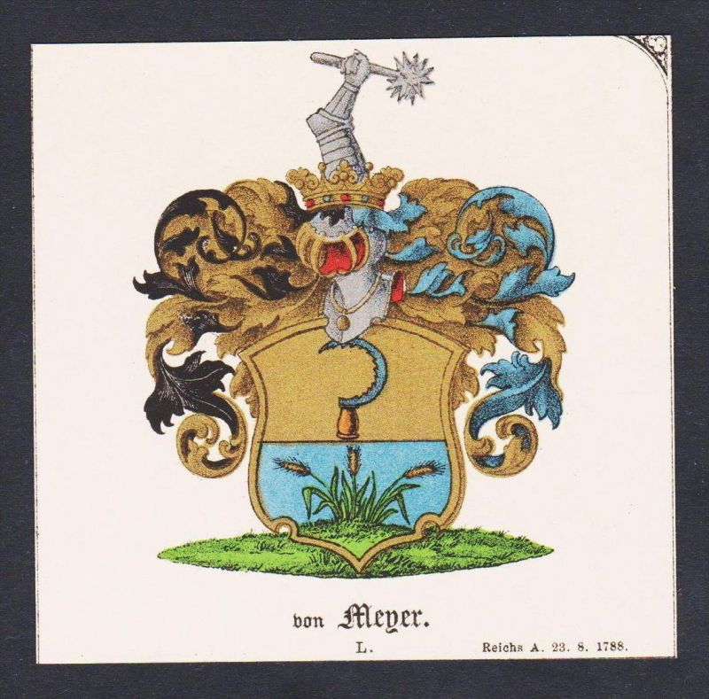 . von Meyer Wappen Heraldik coat of arms heraldry Lithographie