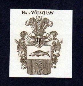 Herren von Völschaw Original Kupferstich Wappen engraving Heraldik crest