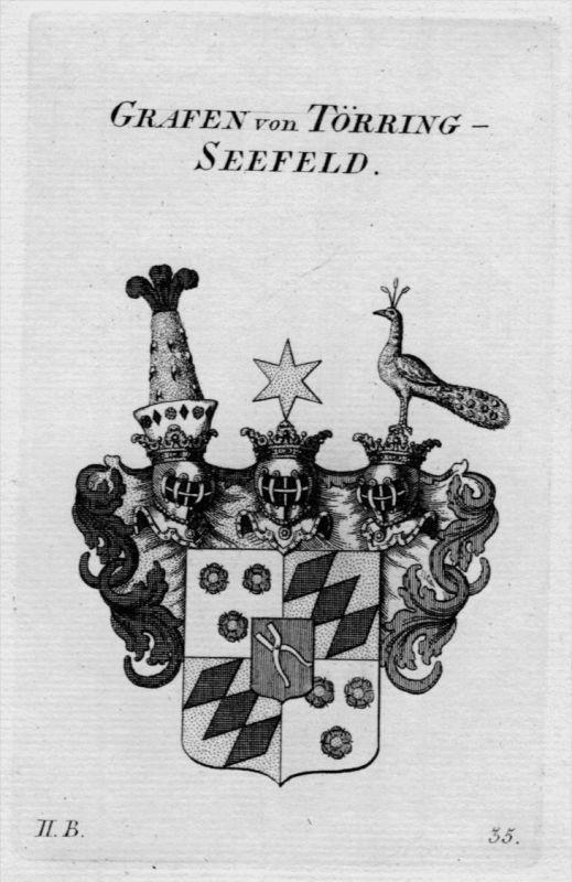 Törring Seefeld Wappen Adel coat of arms Heraldik crest Kupferstich
