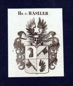 Herren von Häseler Original Kupferstich Wappen engraving Heraldik crest