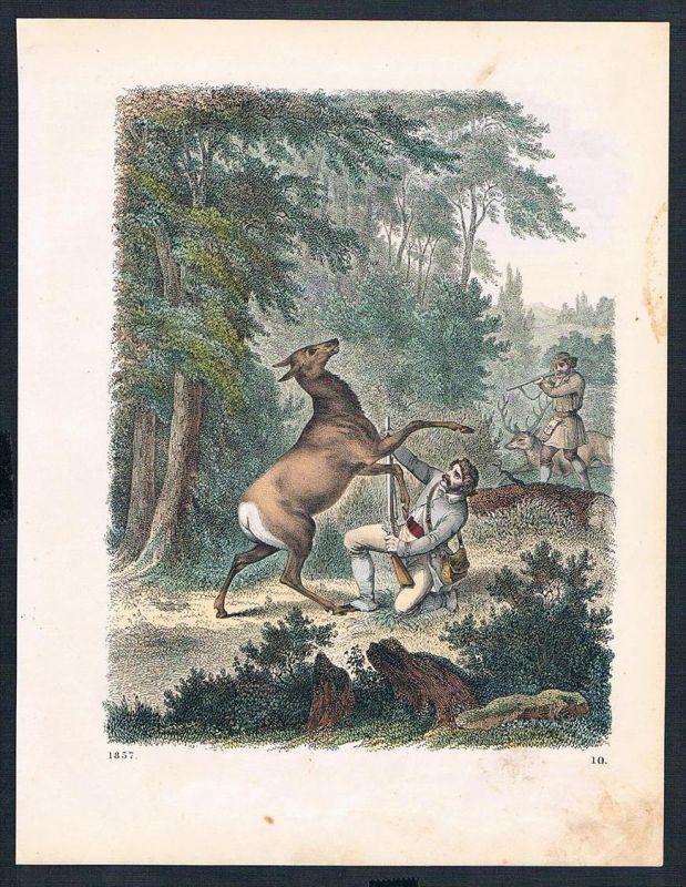 Wald Rehe Jagd forrest deer hunting Original Lithographie lithograph