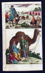 Tatarei Tartary Tracht costumes camel Kupferstich engraving antique print
