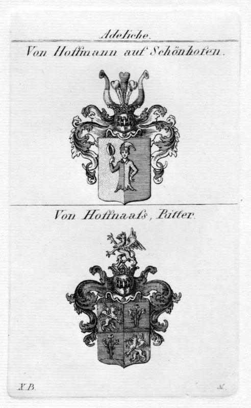1820 Hoffmann Schönhofen Wappen Adel coat of arms heraldry Heraldik Kupferstich