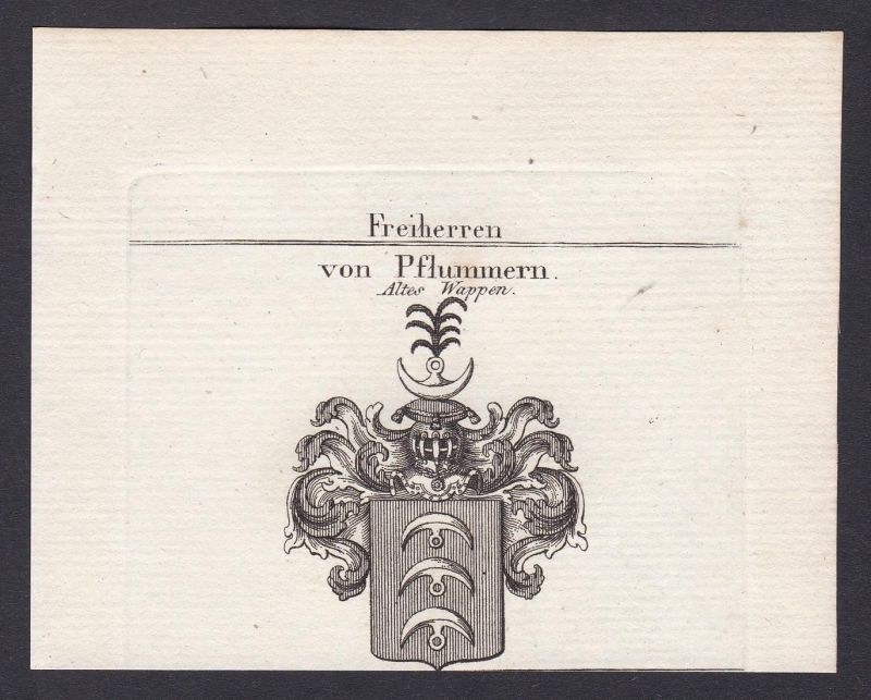 Freiherren von Pflummern. Altes Wappen - Pflummern Wappen Adel coat of arms heraldry Heraldik Kupferstich anti