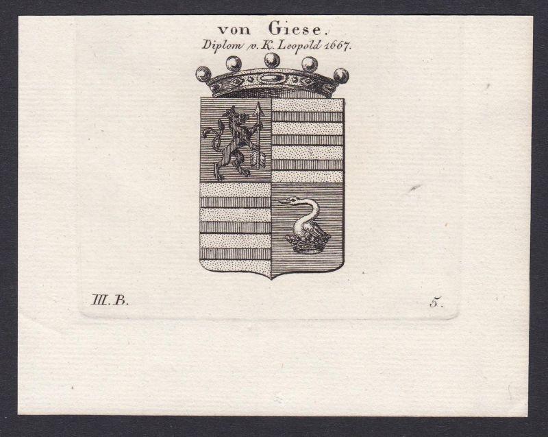 von Giese - Giese Geise Brandenburg Wappen Adel coat of arms heraldry Heraldik Kupferstich copper engraving an