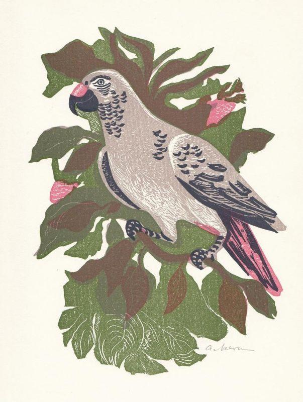 Original-Vierfarben-Linolschnitt von Helmut Ackermann zu Daniel Defoe Robinson Crusoe