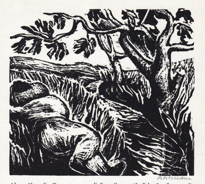 Linolschnitt von Helmut Ackermann zu Wilhelm Hauff Der kleine Muck