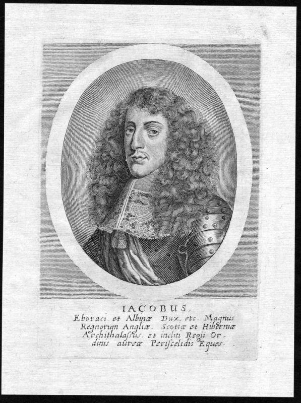 Iacobus - James II of England Scotland Ireland Portrait Kupferstich antique print