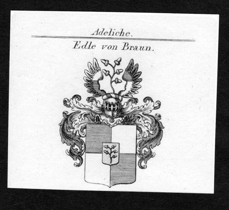 Edle von Braun - Braun Wappen Adel coat of arms Kupferstich antique print heraldry Heraldik