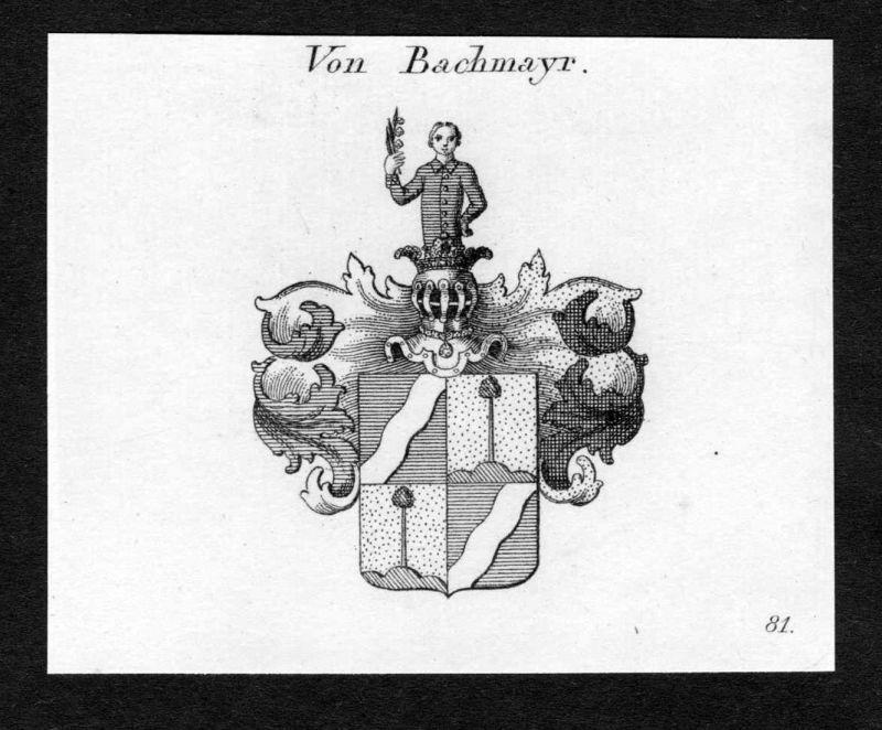 Von Bachmayr - Bachmayr Wappen Adel coat of arms Kupferstich antique print heraldry Heraldik
